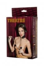Ошейник кожаный с поводком TOYFA Theatre